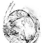 Phenomenon, Lithography, 50 x 70cm